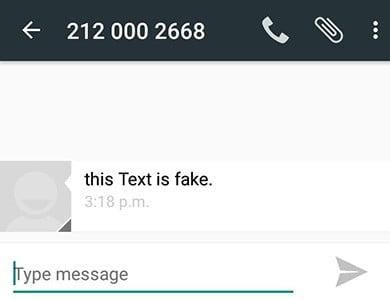 fake-sms-test