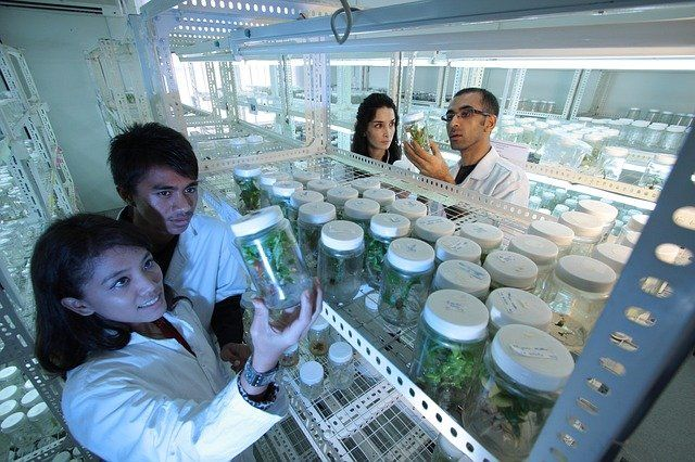 What Is Biotechnology About